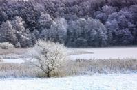 Winter in Warmia