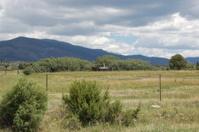 Trucas New Mexico