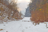 hiking road with snow in mountain