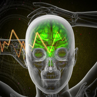 3d render medical illustration of the human brain