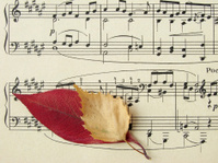 autumnal melody