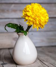 Flowers. Beautiful yellow chrysanthemum in vintage vase.