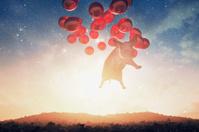 Smug flying pig over the fantasy landscape