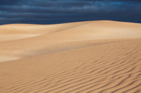 Wind Swept Dunes.