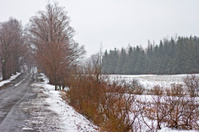 Country Road in Winter Rain and Snow with muted colors