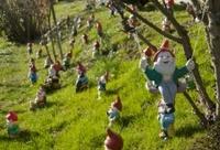 garden gnomes meeting
