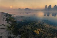 Landscape, sunny dawn, sunrays in fog