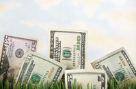 Field of Money