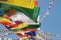 colourful tibetan prayer flags