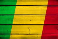 Mali Flag on wood background