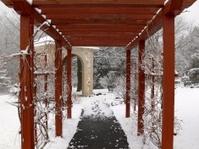 Path to a Shrine