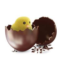 Little Chicken in Broken Chocolate Easter Egg