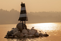Beacon on the river.