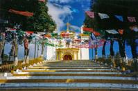 Sacred Steps