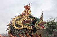 Pond water-breathing dragon