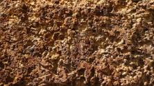 Sediment Stone Texture