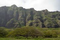 Tropical Rainforest Mountains