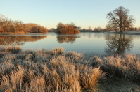 Frozen lake on frosty morning