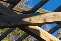 beams of wood for structure