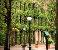Seattle Scenery