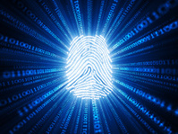 Cyber Identification