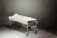 cadaver covered