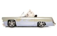 mr and mrs piggy bank in a car