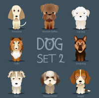 Dogs Set 2. Vector breed of dogs