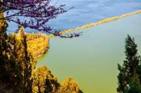 Dianchi lake in spring