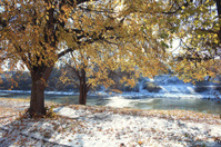landscape late autumn sun freezing river park