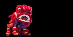 Barongsai(chinese Dragon)