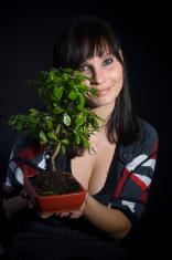 Holding tree