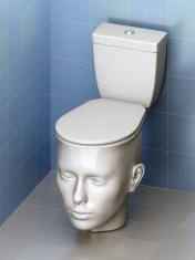 head - toilet