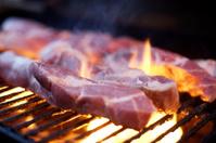 grilled bbq pork ribs