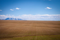 Freshly plowed farm lands