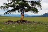 Tibetan Buddhist prayer flags around tree