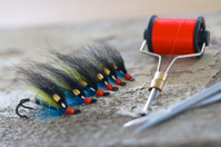 Salmon flies 1