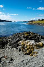 Beagle Channel in Tierra del Fuego