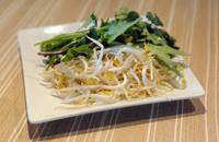 Vietnamese Sprout Salad Beginning