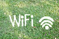 Wifi Symbol On Grass
