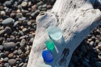sea glass on driftwood