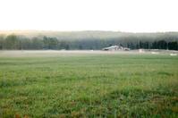 Misty Horse Farm