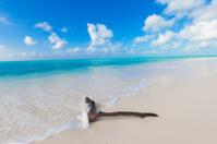 beautiful beach in Cayo Largo del Sur, Cuba