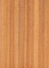 High resolution of wood texture