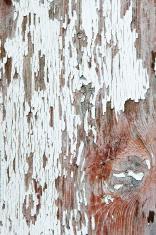 peeling paint off a wooden door in France