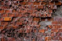 Wall of red bricks