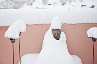Snow Covered Budha