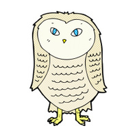 comic cartoon owl