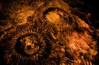 Rough Crater Crack in reddish orange and reddish black color