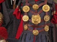 Arde Lucus Roman Emperor costume